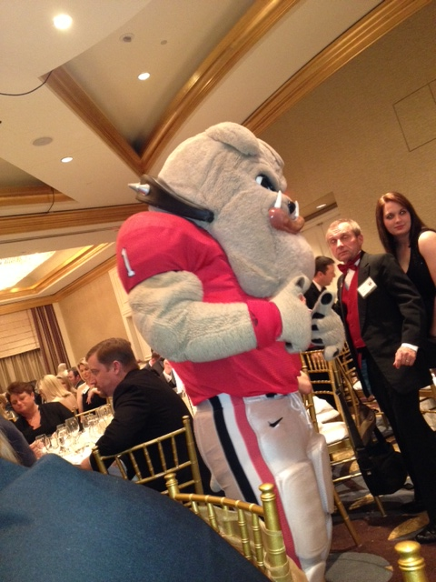 Because bulldogs are the #3 top animal mascot...or so they said at the Ball