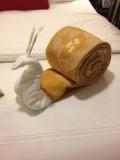 snail towel