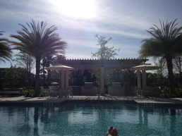 happy hour after work at the pool...FL rocks