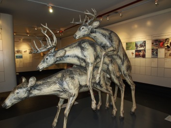 Museum of Sex and deer threesomes
