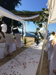 the wedding view