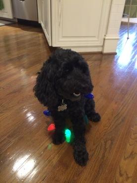 Floyd in the Christmas spirit