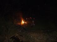 lighting a Christmas tree fire = hazard